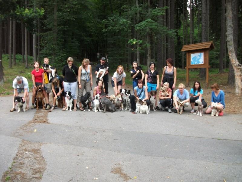 Agility tábor 7/2011